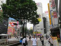 7月2日㈫の109前交差点 - でじたる渋谷NEWS