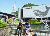 鯨ねえ・・・ - LUZの熊野古道案内