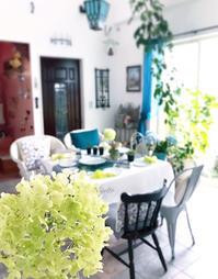 アナベルの見ている風景 - nico☆nicoな暮らし~絵付けと花とおやつ
