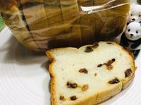 大船フラワーセンターの帰りにレーズン入り食パンを買った。 - 設計事務所 arkilab