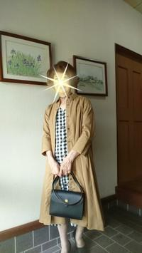ユニクロのコットンAラインワンピースを着てみる - 楽しく元気に暮らします