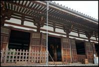 奈良観光-25 - Camellia-shige Gallery 2