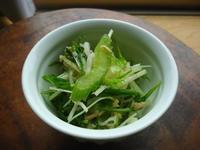 セロリ、大根、水菜とツナのさっぱりサラダ - LEAFLabo