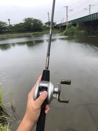 久しぶりの今川釣行.... - 行橋バス釣りLIFE
