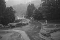 大雨の朝 - 故郷の宝物