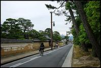 奈良観光-26 - Camellia-shige Gallery 2