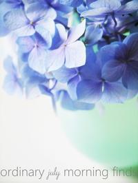 紫陽花の青、柑橘の黄 - serendipity blog