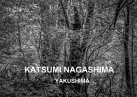 永嶋勝美写真展「YAKUSHIMA(屋久島)」3週間の開催を昨日をもって無事終了致しました。 - 写真家 永嶋勝美の「散歩の途中で . . . !」