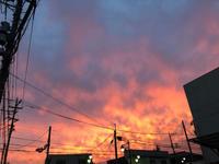 燃える夕景 - ねこちんの日常