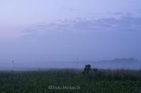 夏至の頃 - ekkoの --- four seasons --- 北海道