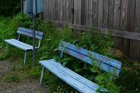 blue bench - フォトな日々
