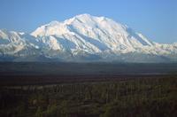 ファインダー越しの景色 - 山と元太