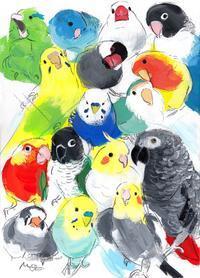 インコと鳥の雑貨展の巡回展を関西つうしんで7月8日(月)~18日(木)迄開催します、今後の予定 - 雑貨・ギャラリー関西つうしん