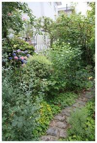 10周年を迎えました♪ - natu     * 素敵なナチュラルガーデンから~*     福岡で庭造り、外構工事(エクステリア)をしてます