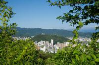 梅雨の晴れ間(松山総合公園) - かたくち鰯の写真日記2