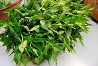 鮎蓼 - 懐石椿亭 公式weblog北陸富山の懐石料理屋