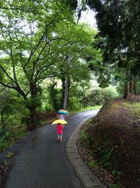 我が家の近況報告 2019/7/6 - 能古島の歩き方