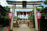 五泉八幡宮 - くろちゃんの写真