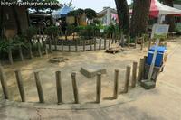 2019年6月桂浜水族館その2 - ハープの徒然草