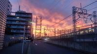 【散撮】夕焼け - 人生を楽しくイきましょう!