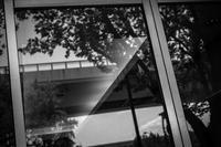 室内に侵入する新緑と都市高速 - Silver Oblivion