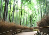 竹林の小径1 - Patrappi annex