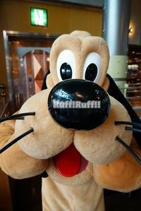 [イン日記]アラフォーを悩殺する世界の愛犬 - Ruff!Ruff!! -Pluto☆Love-