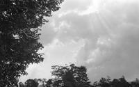 雲間 - ページをめくるように