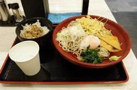 6/22 珍しくえのしま号にメトロロマンスカー - uminaha-t's blog