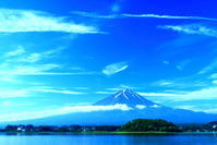 令和元年6月の富士(29)河口湖岸のヨシと富士 - 富士への散歩道 ~撮影記~