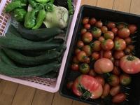 夏野菜たっぷりスープ - ななにゃんと私のDiary