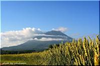羊蹄山の昼と夜(真狩村) - 北海道photo一撮り旅