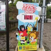 もふてく☆ゴールデンパン祭り2019野毛山編・その1 - レッサーパンダ☆もふてく放浪記