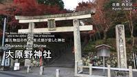 大原野神社(その1)参道で昼食 - レトロな建物を訪ねて