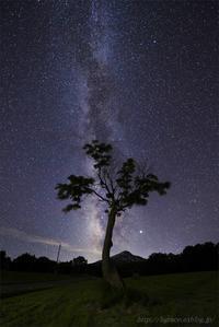 今年の七夕は… - 遥かなる月光の旅