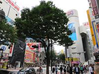 7月8日㈪今日の109前交差点 - でじたる渋谷NEWS