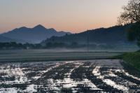 地霧這う~宇陀の朝 - katsuのヘタッピ風景