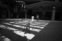kaléidoscope dans mes yeux2019新潟島#53七夕 - Yoshi-A の写真の楽しみ
