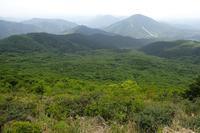 寂地山のハスノハイチゴ(良)6月2日~6日撮影 - 野山の花たち