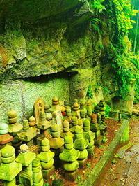 鎌倉梅雨の無常な光景 - 風の香に誘われて 風景のふぉと缶