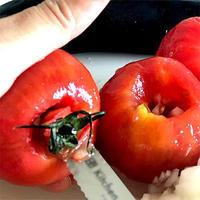 わたしのトマトソースの作り方 - Kitchen Paradise Aya's Diary