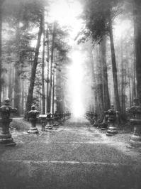 霧の朝 - 故郷の宝物