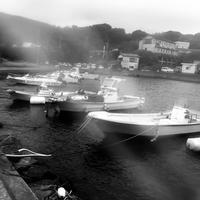 白黒写真#35 - 白黒写真