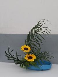 新しい花です - 千佳の花の階段