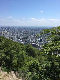 円山散策 - 晴れときどきPUGSLEY