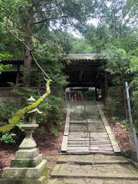 お願いごとが叶いますように(^-^) - ブレスガーデン Breath Garden 大阪・泉南のお花屋さんです。バルーンもはじめました。