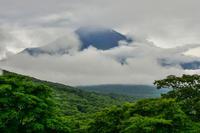 高指山と富士岬平プチプチ散歩 - 風とこだま