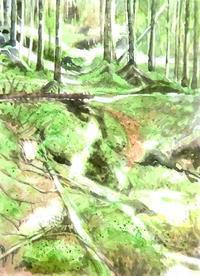 苔の森 - ryuuの手習い
