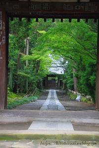 鎌倉寿福寺 - 暮らしを紡ぐ