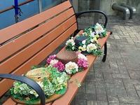 夏休みに向けて - 手柄山温室植物園ブログ 『山の上から花だより』